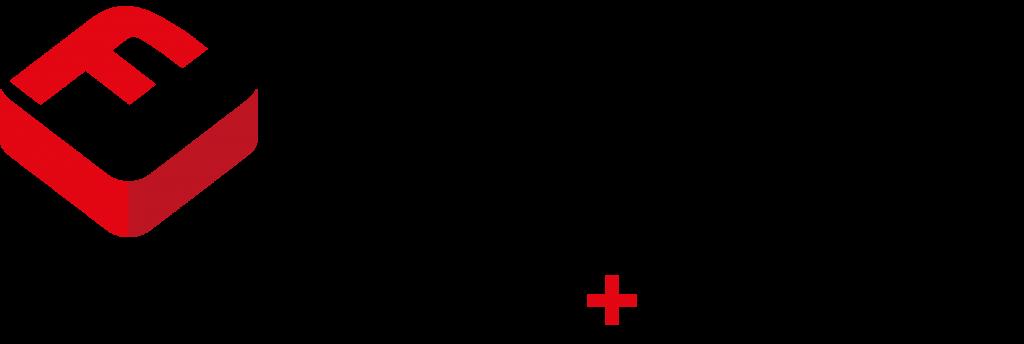 Flintec logo PNG